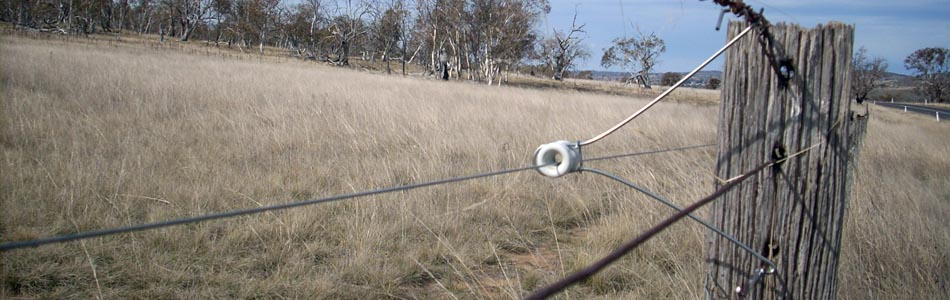 Farm Electric Fence